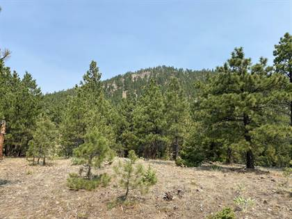 Farm And Agriculture for sale in Lot 41 Rogers Creek Road, Wolf Creek, MT, 59648