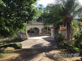 Residential Property for sale in Puerto Rico, Aibonito, PR, 00705
