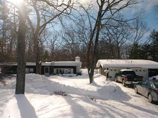 Single Family for sale in 6835 W Wilson Road, Indian River, MI, 49749