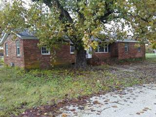 Single Family for sale in 101 Dillon Rd, Denmark, TN, 38391