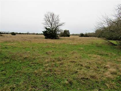 Lots And Land for sale in 0 County Road 3320, Pecan Gap, TX, 75469