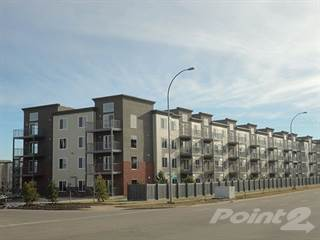 Apartment for rent in Hollick Kenyon Apartments, Edmonton, Alberta