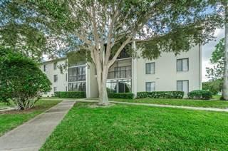 Condo for sale in 2655 PINE RIDGE WAY N B3, Palm Harbor, FL, 34684