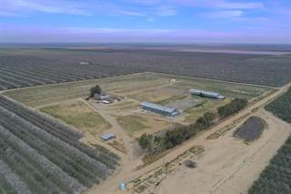 Farm And Agriculture for sale in 32060 Dodge, Cantua Creek, CA, 93608
