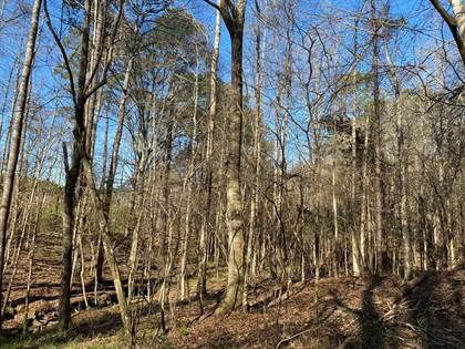 Lots And Land for sale in 5560a Hwy 98, Meadville, MS, 39653