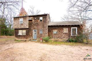 Single Family for sale in 246 Boyd Rd, Big Sandy, TX, 75755