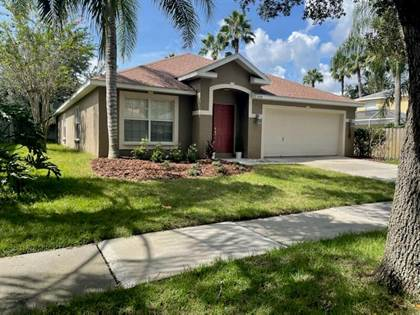 Residential Property for sale in 19143 DOVE CREEK DRIVE, Tampa, FL, 33647