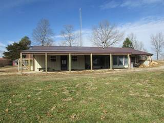 Single Family for sale in 9872 County Road 634, Birch Tree, MO, 65438