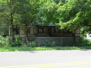 Single Family for sale in 10245 KY-550, Fisty, KY, 41740