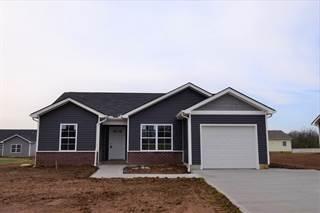Single Family for sale in 221 Hartfield Lane, Loudon, TN, 37774
