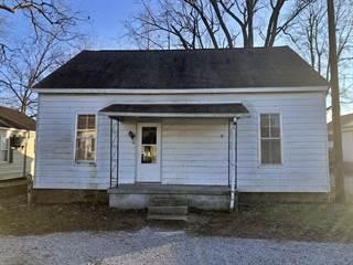 Single Family for sale in 216 Washington Street, Golconda, IL, 62938
