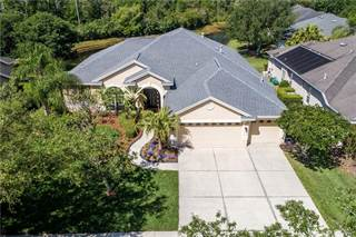 Single Family for sale in 10261 SHADOW BRANCH DRIVE, Tampa, FL, 33647