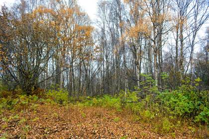 Lots And Land for sale in 19 Wik Road, Kenai, AK