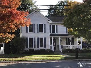 Single Family for sale in 1227 Monroe, Carleton, MI, 48117