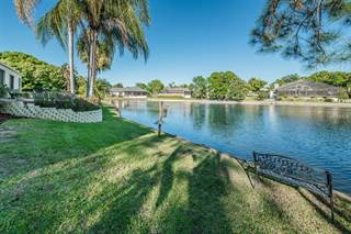 Single Family for sale in 3216 HARVEST MOON DRIVE, Palm Harbor, FL, 34683