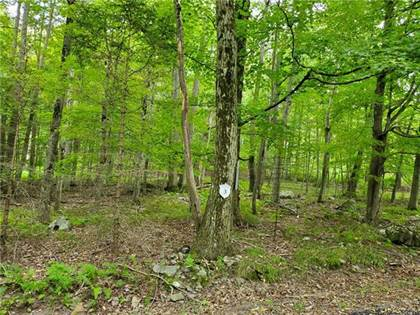 Residential Property for sale in 3 Tall Oak Lot 3, Pocono Lake, PA, 18347