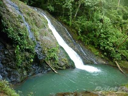 Farm And Agriculture for sale in 206 hectares located in beautiful Bijagual with waterfalls, Bijagual, San José