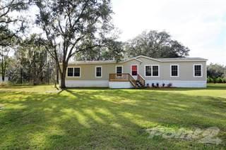 Residential for sale in 6676 54th Run, Lake Butler, FL, 32054