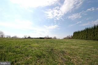 Farm And Agriculture for sale in 15309 LEONDINA DR, Glenwood, MD, 21738
