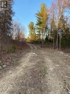 Vacant Land for sale in 00 LOT 43 RANTZ ROAD, Petawawa, Ontario, K8H2W8