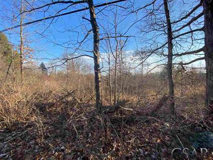 Lots And Land for sale in V/L King St, Corunna, MI, 48817