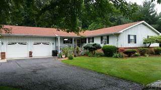 Single Family for sale in 10259 Stark St, Greater Lambertville, MI, 48182
