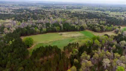 Lots And Land for sale in 673 DENNIS CREEK ROAD, Talbotton, GA, 31827