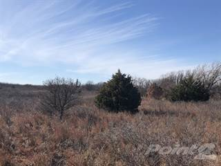 Other Real Estate for sale in County Road W, Shamrock, TX, 79079