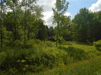 Lots And Land for sale in 0000 rte 274, Floyd, NY, 13354