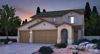 Single Family for sale in 10161 Skye Saddle Ave, Las Vegas, NV, 89166