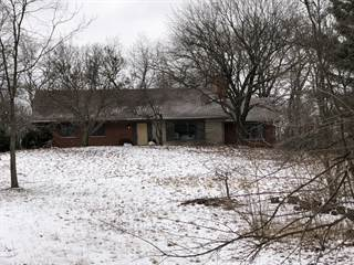 Single Family for sale in 66472 N Centerville Road, Sturgis, MI, 49091
