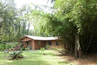Single Family for sale in 8491 160th Street, Trenton, FL, 32693