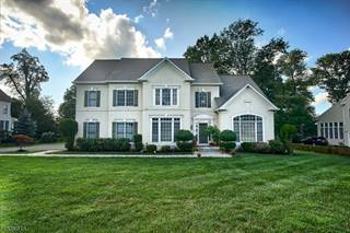Single Family for rent in 3 HIDDEN HOLLOW CT, Green Brook, NJ, 08812