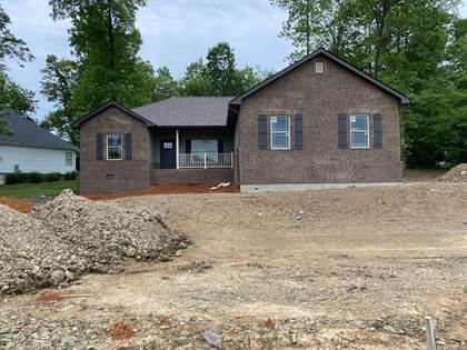 Residential Property for sale in 380 Telford New Victory Road, Greater Jonesborough, TN, 37690