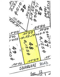 Lots And Land for sale in 48 SHANGHAI RD, Greenbackville, VA, 23356