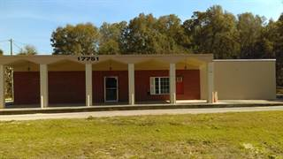 Comm/Ind for sale in 17751 Highway 19, Fanning Springs, FL, 32693