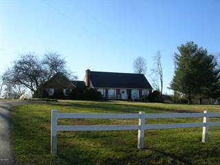 Single Family for sale in 255 Old Route 146 Loop, Vienna, IL, 62995