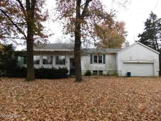 Single Family for sale in 575 State Route 45 North, Eldorado, IL, 62930