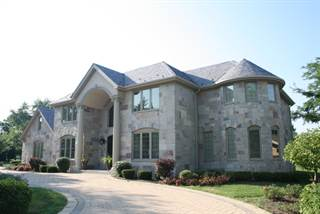Single Family for sale in 1492 WILLOW Road, Schaumburg, IL, 60173