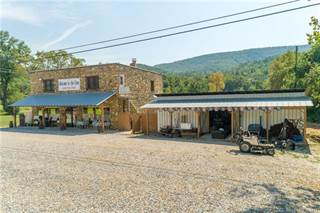 Comm/Ind for sale in 17000 US 221 Highway N, Marion, NC, 28752