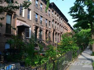 Houses Apartments for Rent in Carroll Gardens 88 Rentals in