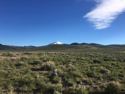 Farm And Agriculture for sale in Nhn Cottonwood Creek Ranch, Polaris, MT, 59746