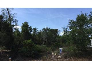 Land for sale in LONESOME PINE LANE Lots 32 & 33, Tarpon Springs, FL, 34689