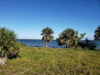 Farm And Agriculture for sale in 0000 Highway Us 1, Grant-Valkaria, FL, 32949