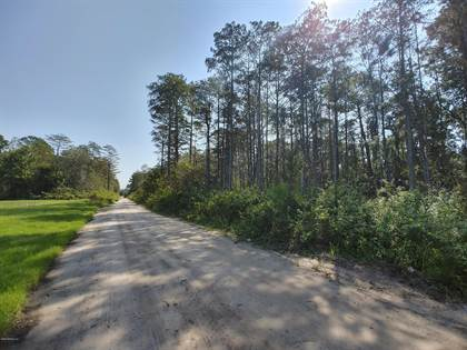 Lots And Land for sale in 0 TAYLOR FIELD RD, Jacksonville, FL, 32222