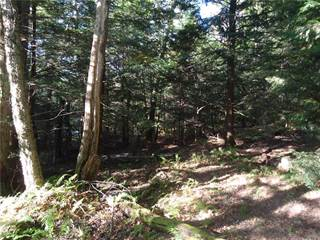 Land for sale in 0 Apache Springs Road, Boylston, NY, 13083