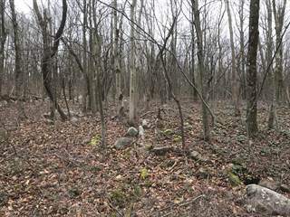 Land for sale in Lot#A216 Black Walnut Ln, Albrightsville, PA, 18210