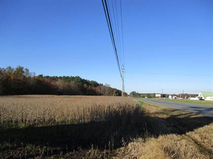 Commercial for sale in 0 LANKFORD HWY, Temperanceville, VA, 23442