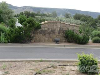 Land for sale in 49 Talon Trail, Battlement Mesa, CO, 81635