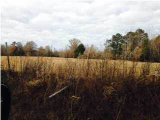 Lots And Land for sale in 1529 ROSSIE COATS RD, Lauderdale, MS, 39335